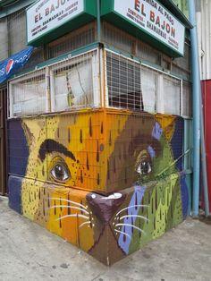 Nosey, Valparaiso, Chile