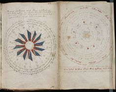Pages from the astrological section of the Voynich manuscript (Beinecke Rare Book and Manuscript Library)