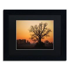 "Trademark Global 'Vermilion' by Jason Shaffer Framed Photographic Print Size: 11"" H x 14"" W x 0.5"" D, Matte Color: Black"