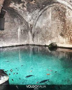 regram @volgosiena Fontebranda Siena  Foto di @_elena_fanni_  #siena #toscana #italia #italy #volgosiena #volgotoscana #volgoitalia #volgosocial #iloveitaly #italytrip #italytour #travelingram #madeinitaly #tourism #piazzadelcampo #torredelmangia #volgobnw #bnw #biancoenero #instatraveling #instapassport #igtravel #travelblog #globtrotter #seetheworld #worldtraveller #travellife