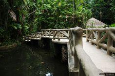 A ponte do rio