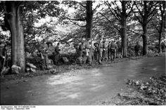 Bundesarchiv Bild, Arnhem, Deutsche Infanterie. German infantry soldiers near Arnhem. German army photo.