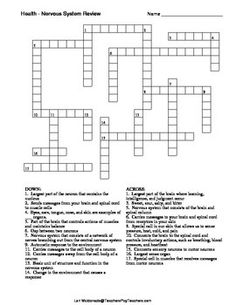 Crossword puzzle of the Integumentary System | fruit ...