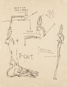 Jean-Michel Basquiat, Leg of a Dog, from Da Vinci, 1983, Screenprint on Japanese paper, S. 39 3/4 x 31 inches. [PHILLIPS : NY030114]