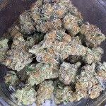 Animal Cookies Marijuana Strain Review And Pictures