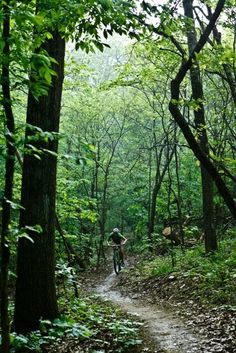 The Allegrippis Trail at Raystown Lake is one of the premier mountain biking destinations in the eastern U.S. With endless routes and more than 30 miles of single track trails, it makes for a perfect way to spend a #springPA day.