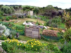 """Have you heard the term """"permaculture"""" but aren't sure what it means? What does permaculture have to do with growing your own food and becoming more self-sufficient. Permaculture Design, Permaculture Principles, Permaculture Garden, Farm Gardens, Outdoor Gardens, Potager Bio, Natural Farming, Forest Garden, Garden Pond"""
