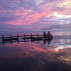 #grassykey #grassykeysunrise So lucky Cecil booked an early morning fishing trip and woke me to see the s #sunrise #floridakeys amazing!! #ilovetravel