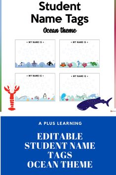 Student Name Tags, Ocean Themes, Classroom Organization, Getting Organized, Names, Education, Learning, School, Classroom Setup