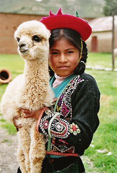ANDEAN CAMELIDS A typical inhabitant of the Andes, the South American camelid has for the past years served as a source of food, clothing and as a beast of burden for Peruvians. Kids Around The World, We Are The World, People Of The World, Alpacas, Peruvian People, Argentina South America, Peruvian Textiles, Dorm Art, Costumes Around The World
