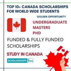 Scholarships Canada, Scholarships For College Students, Undergraduate Scholarships, International Scholarships, Carleton University, University University, University Of Saskatchewan, Concordia University, University Of British Columbia