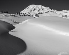 A black and white landscape photograph of shadows in the snow created by a creek bed meandering upwards towards Mount Rainier as captured on a sunny winter day at the Paradise area of Mount Rainier National Park, Washington. Winter Day, Winter Christmas, Mount Rainier National Park, Black And White Landscape, Landscape Photographers, Shadows, National Parks, Washington, Paradise