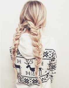 Two fishtail braids