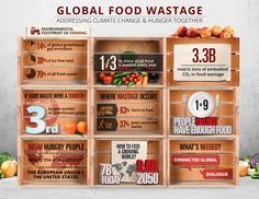 World Cold Chain Summit coming soon Recycling Facts, Agricultural Sector, Lead The Way, Food Waste, Food Storage, Climate Change, Fresh Water, Green Ideas, Cold