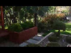 Kertépítés, kerttervezés ötletek #kertépítés #kerttervezés - YouTube Aquarium, Youtube, Plants, Goldfish Bowl, Aquarium Fish Tank, Plant, Aquarius, Youtubers, Youtube Movies