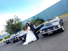 Mustangs in Black 1966 and 1967 GT Convertible Ford Mustangs included our Shelby GT350 out for Lidia and Reti's wedding in Melbourne.