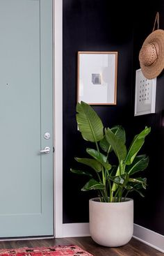 A dark charcoal wall and a minty green door makes for a dramatic before and after entryway makeover.