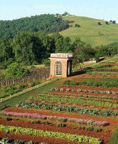 Thomas Jefferson's Monticello has kitchen gardens going up a slope.   http://www.growingagreenerworld.com