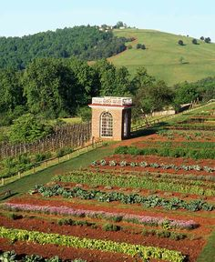 Thomas Jefferson's Monticello has kitchen gardens going up a slope.   http://www.growingagreenerworld.com