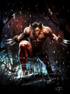 Wolverine - Rudy Ao