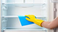 Wipe down your refrigerator with equal parts white vinegar and water, remembering to give the side walls a good cleaning as well.