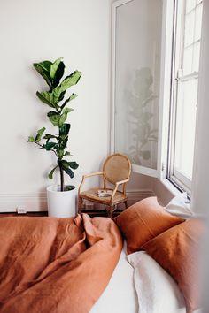Home Bedroom, Bedroom Decor, Design Bedroom, Fall Bedroom, Peach Bedroom, Casual Bedroom, Bedroom Corner, Bedroom Plants, Bedroom Inspo