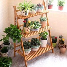 diy plant stand This durable and stable plant rack is ideal to organize potted plants and put them in order for display in your living room, garden, balcony or patio. With its delicate Apartment Balcony Garden, Small Balcony Garden, Balcony Plants, Patio Plants, Outdoor Plants, Outdoor Plant Stands, Plant Shelves Outdoor, House Plants, Plant Ladder