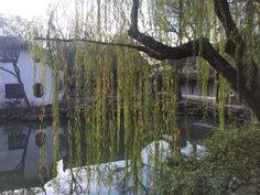 Su Zhou: Humble administrator's garden