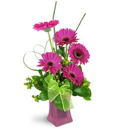 They'll be dancing with happiness when they receive this charming petite arrangement! These bright, modern tones of pink and green are full of cheer.  Bright pink gerbera daisies are perfectly complimented by green hypericum berries and a lime green ribbon. A lovely pink glass vase is the finishing touch!