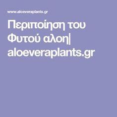 Περιποίηση του Φυτού αλοη| aloeveraplants.gr