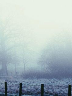 "mark-don: ""Fog this morning """