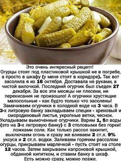 Diet Recipes, Cooking Recipes, Healthy Recipes, Keto Food List, Food Trays, Happy Foods, Russian Recipes, No Cook Meals, Vegetable Recipes