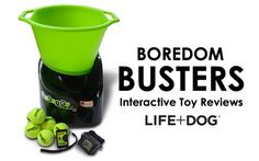 Boredom Busters for
