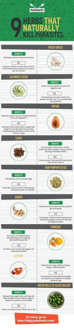 9 Herbs That Naturally Kill Parasites: