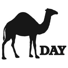 What day is it HUMP DAY #humpday #whatdayisit #mikemikemike