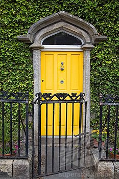 The canary yellow door + the ivy = pure happiness!