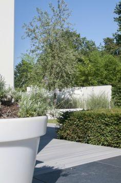 http://leemwonen.nl/shoppen-hotspots-i-blogtours-2-struinen-door-de-tuinen-van-marc-de-graaf/ #tuin #tuinen #garden #green #buiten #buitenleven #outdoor #architecture #architectuur #tuinarchitect #marcdegraaftuinen Pictures by Ontwerpgeheimen