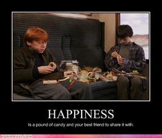Happiness is.... - Harry Potter Vs. Twilight Photo (11986797) - Fanpop