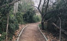 The Enchanting Trail In Southern California That Will Make You Blissfully Happy