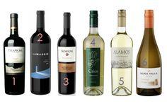Argentina wine picks!