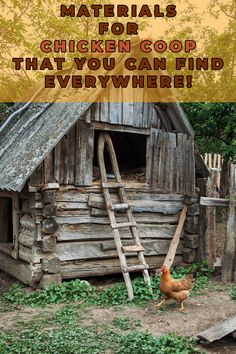 When you are ready to buy your construction materials and supplies, to save on expenses, it is recommended that you shop for your chicken coop building supplies from second-hand shops. Diy Chicken Coop Plans, Easy Chicken Coop, Chicken Feeders, Building A Chicken Coop, Chicken Runs, Chicken Garden, Raising Backyard Chickens, Pet Chickens, Chicken Breeds