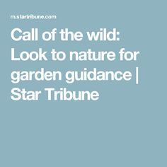Call of the wild: Look to nature for garden guidance   Star Tribune