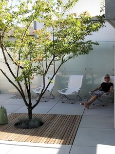 Take your patio layout design to the next level with our list of favorite ideas. Whether it is large patios, or fire pits you will find everything you need Terrace Garden, Garden Pool, Green Garden, Small Gardens, Outdoor Gardens, Patio Interior, Garden Architecture, Backyard Landscaping, Bonsai