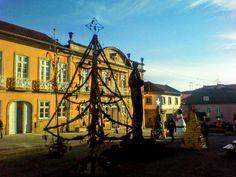 Boa noite :D Pinheiros de Natal feitos de materiais reciclados concebidos por várias associações do Concelhp na Praça Municipal  de Arcos de