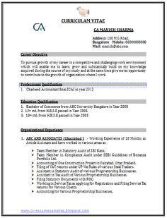 Professional Curriculum Vitae Resume Template Sample