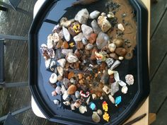 "Rock pool play ("",)"