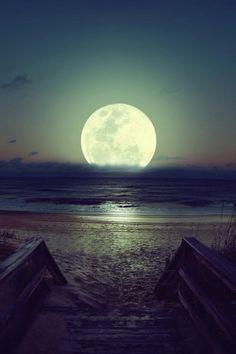 #Lua #Cheia #Praia #Areia #Paraíso.!