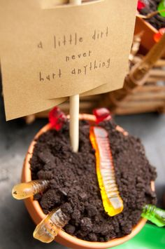 """Dirt cups for dessert at our """"Plant a Seed"""" Eco-Friendly Birthday Party...also perfect for Earth Day!"""