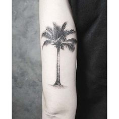 back bicep tattoo palm tree