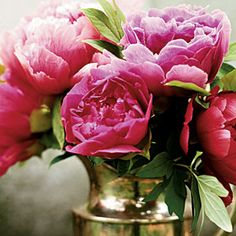 Peonies. I have peonies that were in my great-grandmother's yard.  I love them.